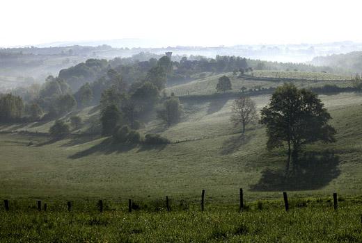 1 landschap 350