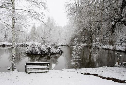 12 winter