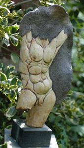 torso man 300x170
